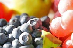 Seasonal fruit Stock Image