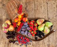 Seasonal Fruits Stock Image