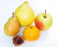 Seasonal Fruits Royalty Free Stock Images