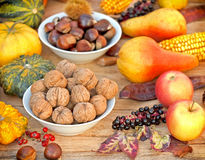 Seasonal fruits - autmn harvest Royalty Free Stock Photography
