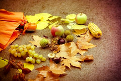 Seasonal fruits - autumn concept Royalty Free Stock Images