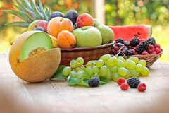 Seasonal fruits - summer fruits Stock Image