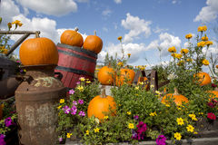 Seasonal garden decorations Royalty Free Stock Photo