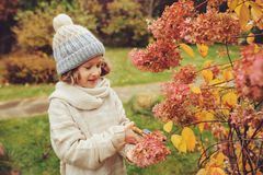 Seasonal garden work in late autumn, child girl helps to cut hydrangea bush with pruner Stock Photo