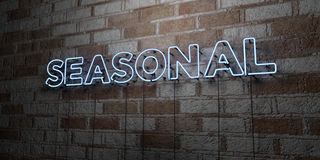 SEASONAL - Glowing Neon Sign on stonework wall - 3D rendered royalty free stock illustration Royalty Free Stock Photos