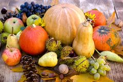 Seasonal harvest on table - eating healthy food organic fruit and vegetable. Autumn harvest, seasonal fruit and vegetable on rustic wooden table Royalty Free Stock Photography