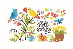 Seasonal horizontal banner template with Hello Spring phrase, blooming meadow flowers, cute pretty funny birds and. Butterflies on white background. Flat vector illustration