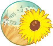 Seasonal icon - summer. Round icon with sunflower on the summer landscape background Stock Photography