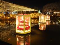 Seasonal Illumination in Ashikaga Flower Park. Christmas Illumination in Ashikaga Flower Park near Tokyo, Japan royalty free stock photo