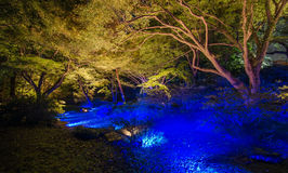 Seasonal illuminations at Rikugien Garden, Tokyo, Japan Stock Photo