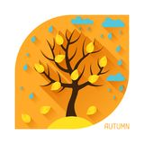 Seasonal illustration with autumn tree in flat Royalty Free Stock Image