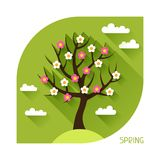Seasonal illustration with spring tree in flat Royalty Free Stock Photo