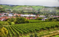 Seasonal landscape of Wurzburg, Bavaria Royalty Free Stock Images
