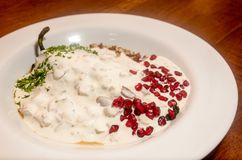 Traditional mexican chile en nogada. Seasonal mexican gourmet dish with chili filled with meat and dressed with a sauce of nuts and pomegranate stock images