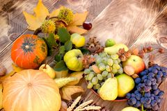 Seasonal organic fruit and vegetable - rich autumn harvest. Harvest on table - thanksgiving, seasonal fruit and vegetable, pumpkin and squash Royalty Free Stock Photos