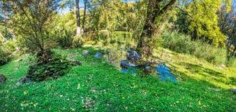Seasonal photo of city park in Nitra, Slovakia, panorama royalty free stock image