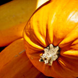Seasonal Pumpkin Background Stock Images