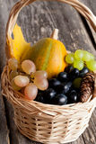 Seasonal pumpkin and grapes  in a basket with autumn leaves Stock Photography