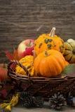 Seasonal pumpkins and apples in the basket, vertical Royalty Free Stock Photo