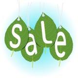 Seasonal sale, the inscription on the leaves royalty free illustration