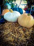 Pumpkins on a bale of hay stock photos