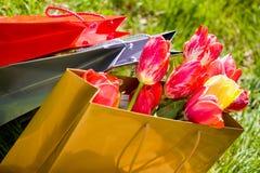 Seasonal shopping Stock Images