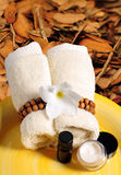 Seasonal spa products in the fall or autumn Royalty Free Stock Images