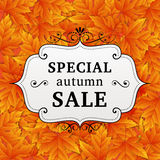 Seasonal special autumn sales business background Stock Photography