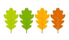 Seasonal specific oak leaves icon. S set Stock Images