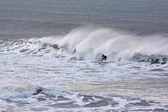Free Seasonal Surf Royalty Free Stock Photos - 36172368