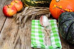 Seasonal tableware autumn pumpkins, apples, berries, cones with Stock Photography