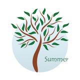 Seasonal tree Stock Image