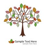 Seasonal tree autumn  template Royalty Free Stock Image