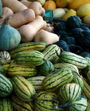 Seasonal Vegetables Royalty Free Stock Photo