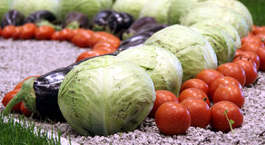 Seasonal vegetables Royalty Free Stock Photography