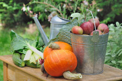 Seasonal vegetables and apples Royalty Free Stock Image