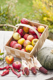 Seasonal vegetables and fruits Stock Photo