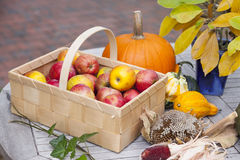 Seasonal vegetables and fruits Stock Photography