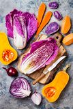 Seasonal winter autumn fall vegetables over gray stone table. Plant based vegan or vegetarian cooking concept. Clean eating food. Seasonal winter autumn fall stock photography