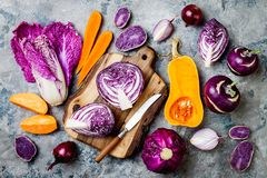 Seasonal winter autumn fall vegetables over gray stone table. Plant based vegan or vegetarian cooking concept. Clean eating food. Seasonal winter autumn fall royalty free stock photos