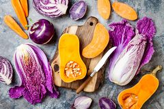 Seasonal winter autumn fall vegetables over gray stone table. Plant based vegan or vegetarian cooking concept. Clean eating food. Alkaline diet stock images