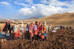 Seasonal women workers Royalty Free Stock Images