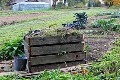 Seasonal work in the autumn garden concept. Container for wooden. Planks with faded dead plants on vegetables beds royalty free stock image