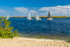 Seasonal yacht race on a river Stock Photography
