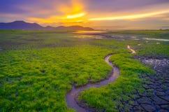 Seasonally changing landscape Stock Photography