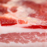 Seasoned bacon - pancetta stagionata Stock Images