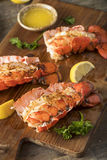 Seasoned Baked Lobster Tails Royalty Free Stock Image