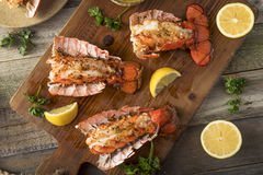 Seasoned Baked Lobster Tails Royalty Free Stock Images