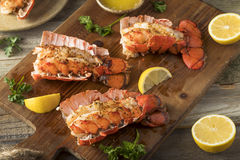 Seasoned Baked Lobster Tails. With Lemon and Butter Sauce Stock Photography