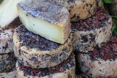 Seasoned cheese Stock Images